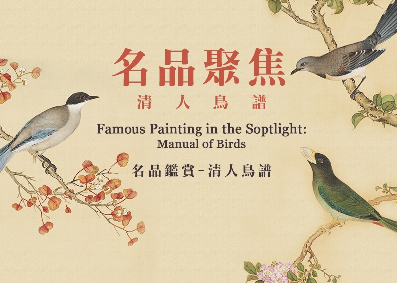 "Famous Painting in the Spotlight ""Manual of Birds"""