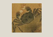 逗趣系列08:螃蟹