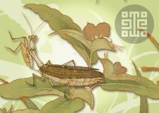 LEE Di Dinastía Song Plantas e insectos, floresta otoñal